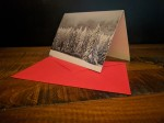 Winter Forest Season's Greeting Card