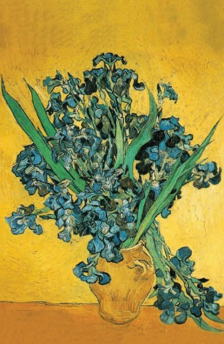 Irises by Van Gogh Postcard